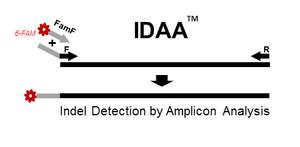 InDel Detection by Amplicon Analysis (IDAA)